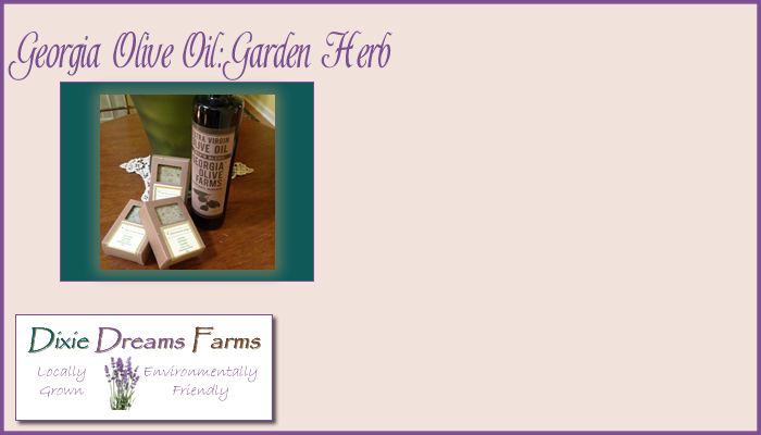 Georgia Olive Oil – Garden Herb